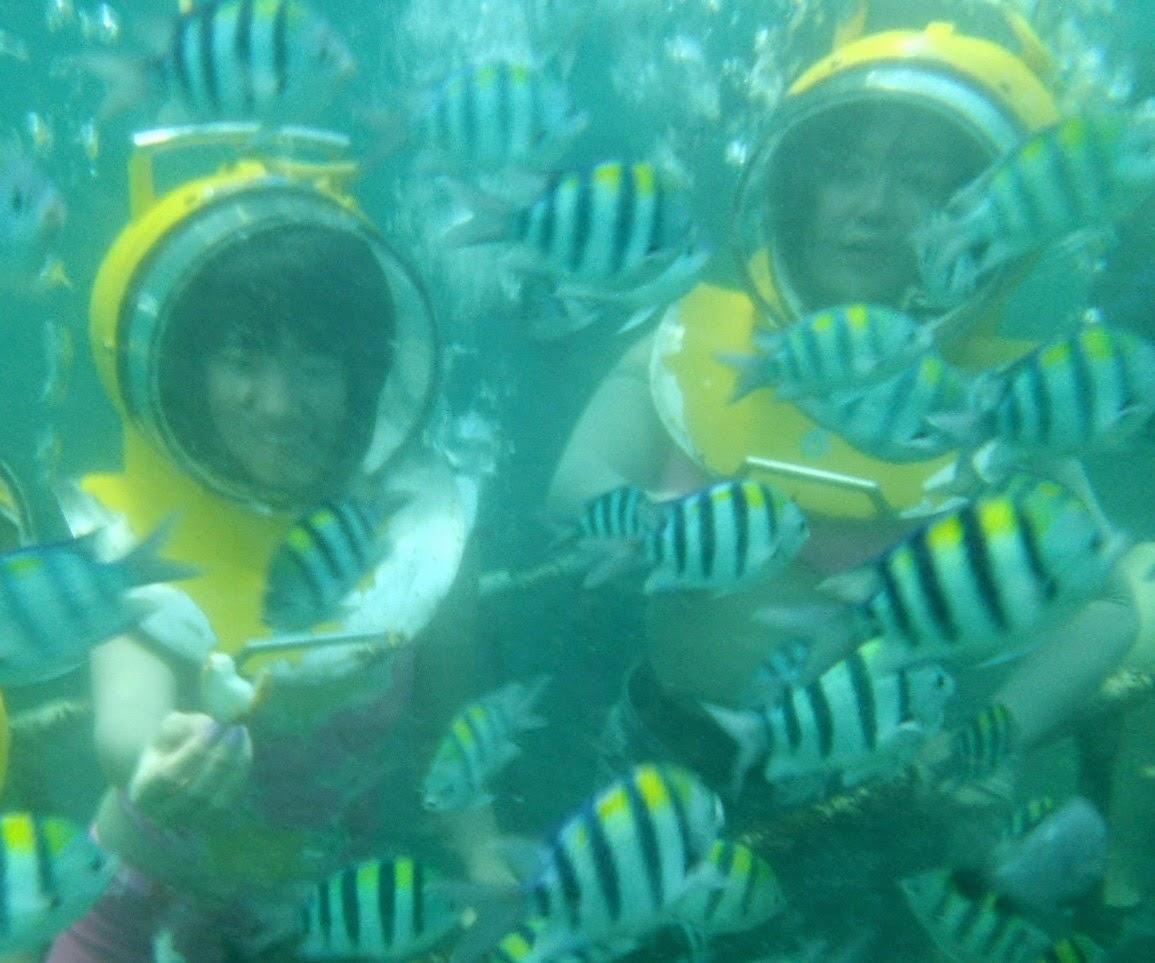 Seawalker-Tanjung-Benoa