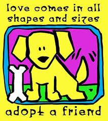 Adopt A shelter Pet: Visit your local shelter dont buy Pets