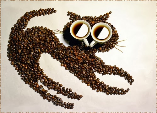 13-Cat-2-Irina-Nikitina-Music-Teacher-Photography-Coffee-Beans-and-Cups-Of-Coffee-www-designstack-co
