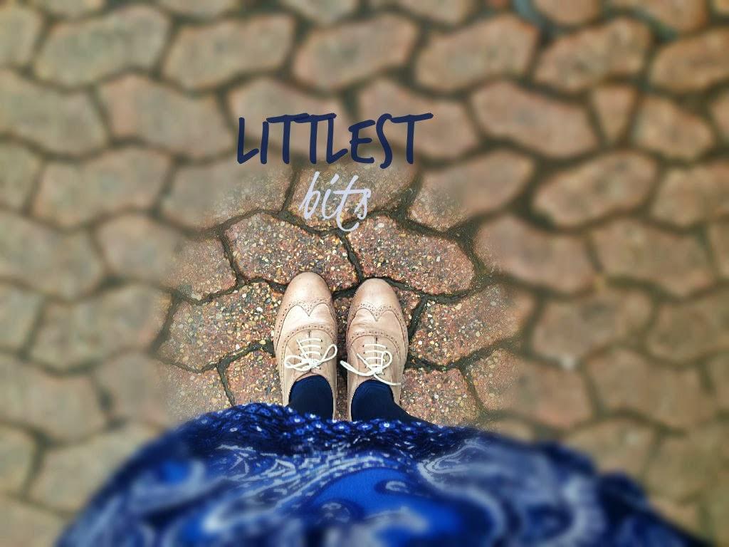 Littlest Bits