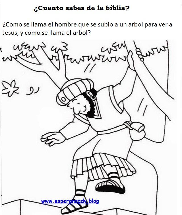 Lujo Zaqueo Para Colorear Para Preescolares Bosquejo - Dibujos Para ...