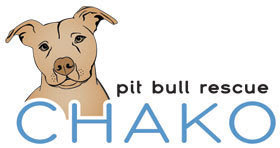 Car Wash this Saturday to Benefit Chako Pit Bull Rescue