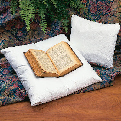 rare+book+pillow.jpg