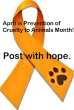 Join the ASPCA
