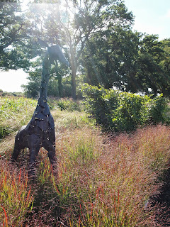 Sussex Prairies Garden. Amazing flowers and good example of garden design. Sculpture in the landscape