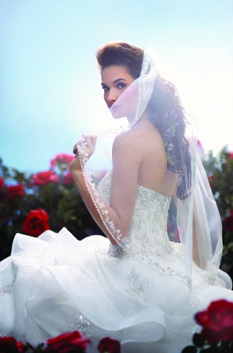 Official Disney Bridal Veils from Alfred Angelo - Belle