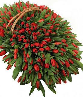 Ramo de tulipanes rojos en cesta