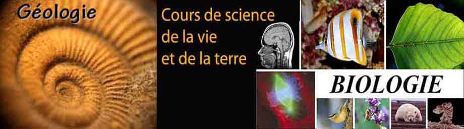 cours du sience de la vie et de la terre