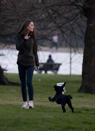 Duke Gardens Dog Walking