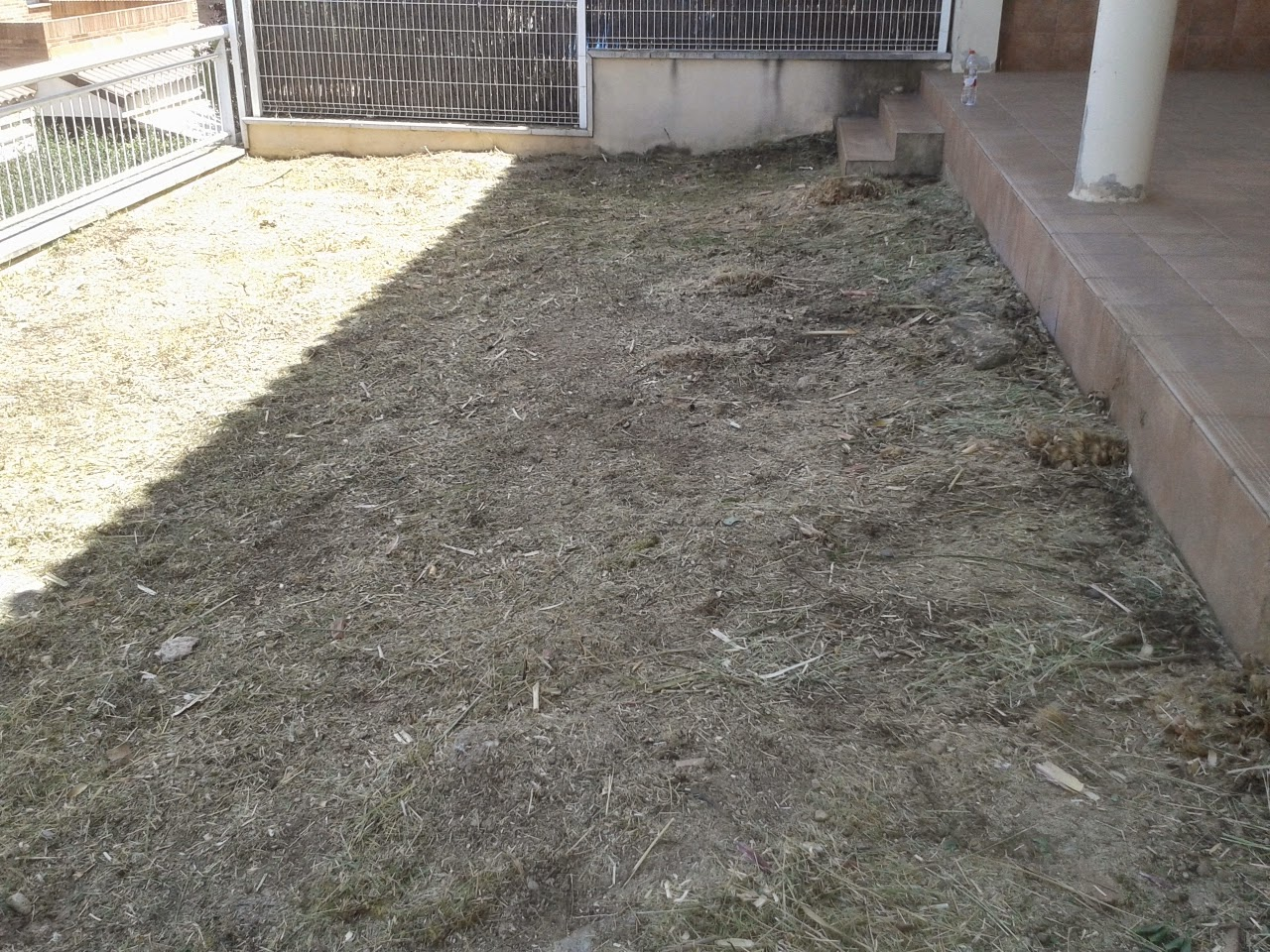 Serviciosdejardineriabasica tarifa plana mantenimiento for Jardineria barata barcelona