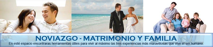 Matrimonio Y Familia : Noviazgo matrimonio y familia el una