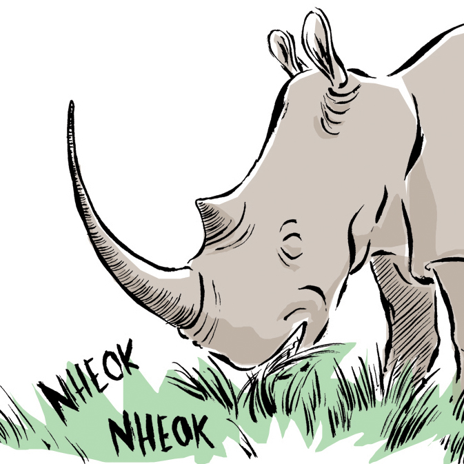 O rinoceronte...