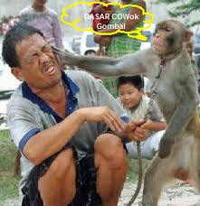 hahaha Foto Unik dan Aneh Yang Bikin Anda Jingkrak Abis