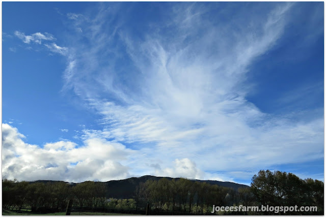 Autumn weather | joceesfarm.blogspot.co.nz