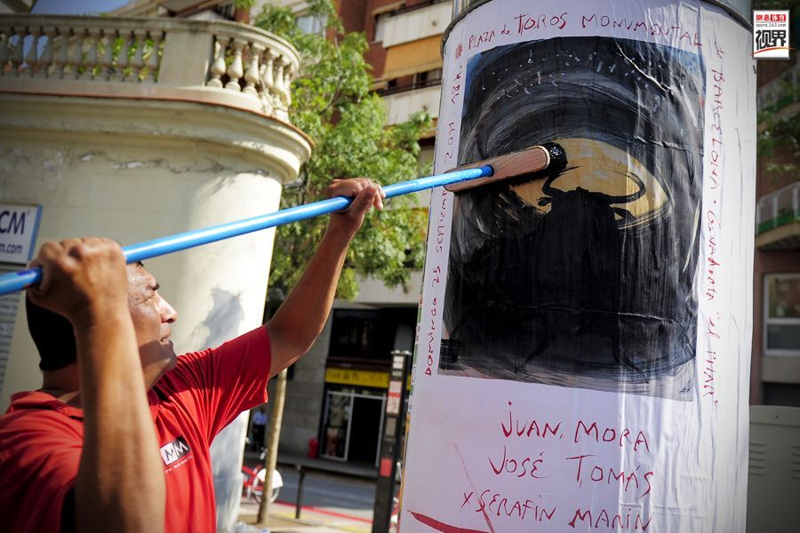 Ban bullfighting, after a year the Catalan region including tourism, ...