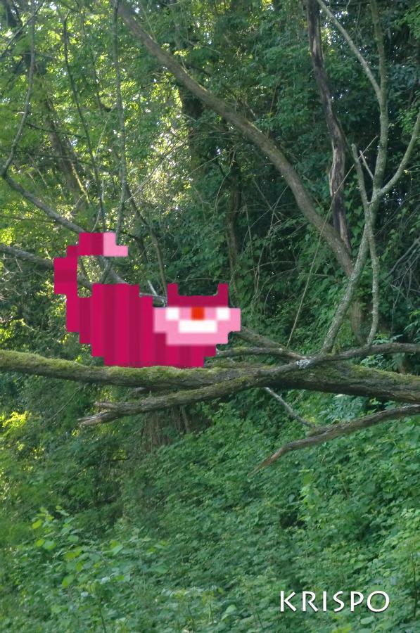 gato de cheshire pixelado encima de una rama de arbol