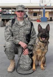 Service Dogs Should Go Home With There Soldier