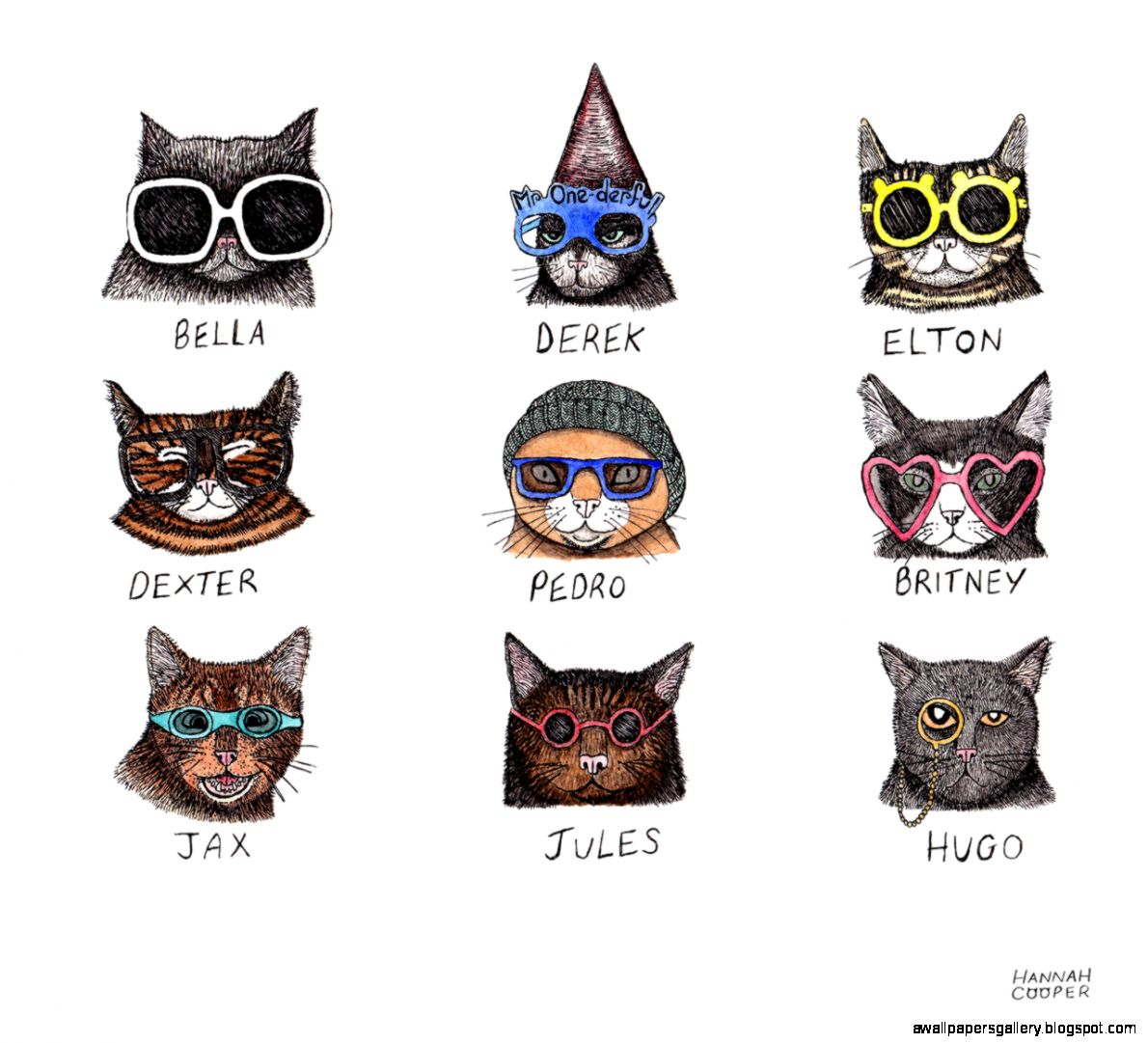 cool-cat-tumblr
