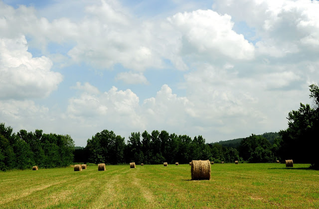 Hay Bales Chickasaw County Hickory Ridge Studio
