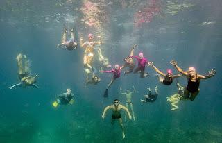 http://www.tropicallight.com/swim1/15nov15sm/15nov15sm.html
