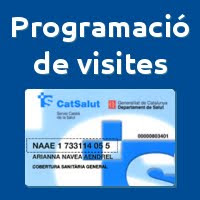 Programació de visites