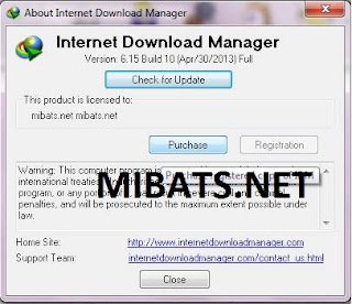 Download IDM [Internet Download Manager] Portable 6.19 Build 5 | 2014