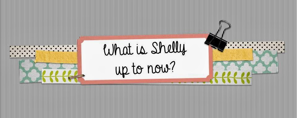 What is Shelly up to now?