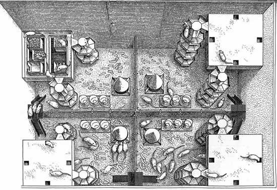 Utopia de rato