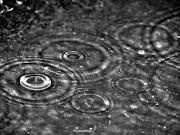 Gocce di pioggia autunnale · Nessun commento