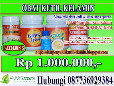 Penyembuhan Herbal Penyakit Kutil Kelamin Tanpa Bedah Listrik