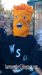 Homemade Wushock Costume