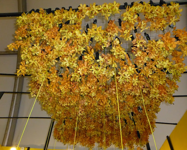 yellow-orchid-ceiling