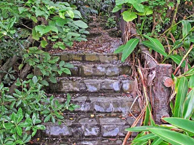 stone stairs, woods,utaki