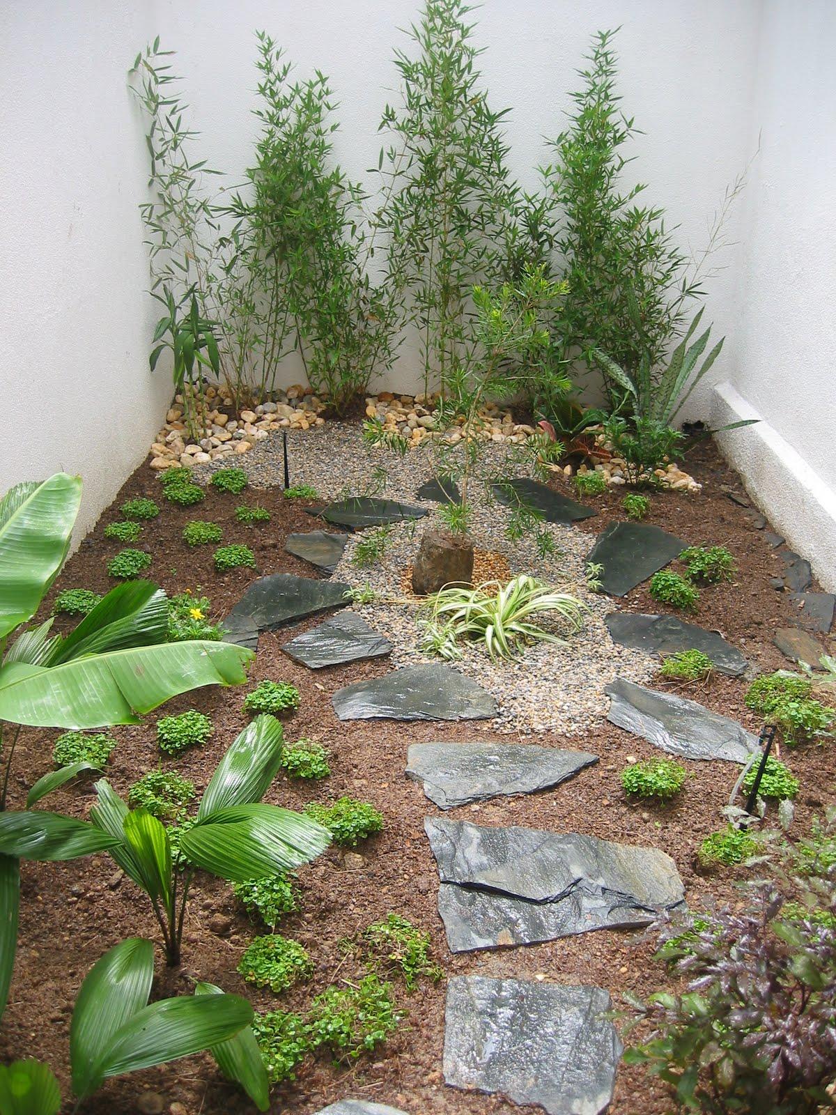 La tiendita del bonsai y paisajismo jardines bonsai paisajismo - Jardines y paisajismo ...