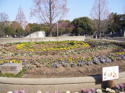 大阪府・久宝寺緑地 花だん