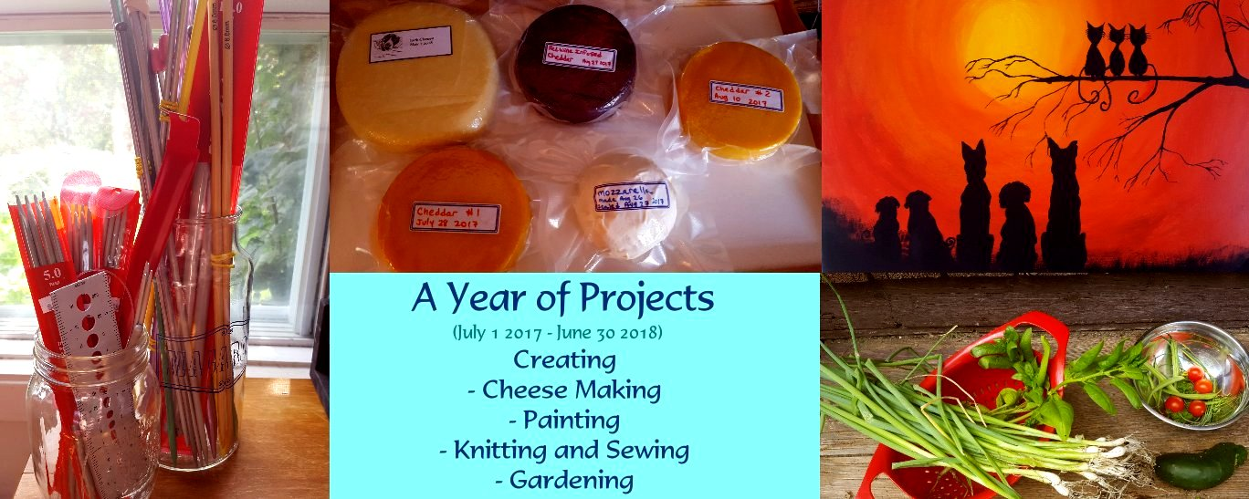 A Year of Projects (YOP)