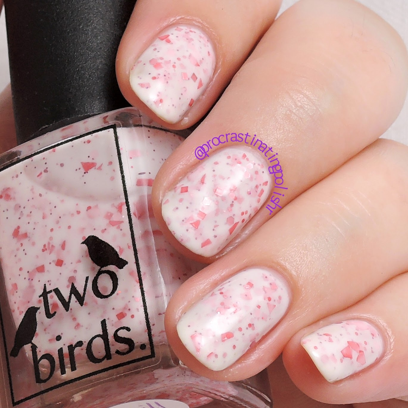 Two Birds Lacquer - The Thrill of the Thought