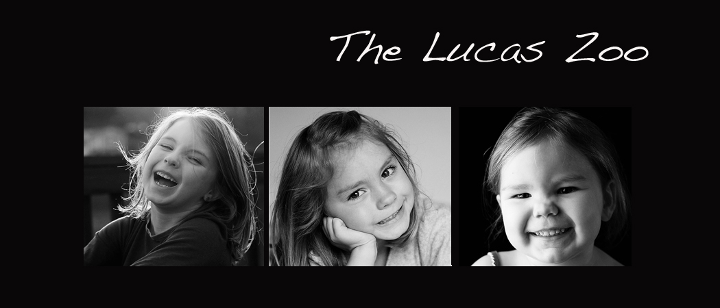 The Lucas Zoo