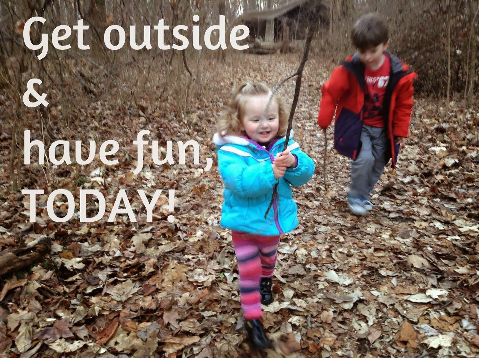 No, the trees are not dead! 5 Activities for Teaching Your Kiddos About Trees in the Winter.