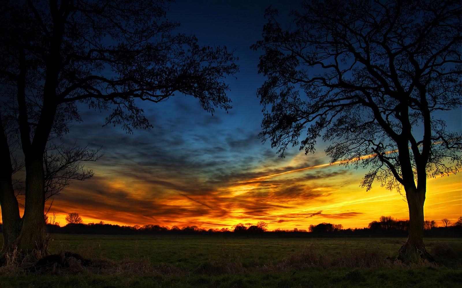 http://3.bp.blogspot.com/-OEANkevGvg0/TjYSjyoTlkI/AAAAAAAAK3E/Y_UZobiXsWo/s1600/614_fire_on_the_sky_wallpaper_279902.jpeg