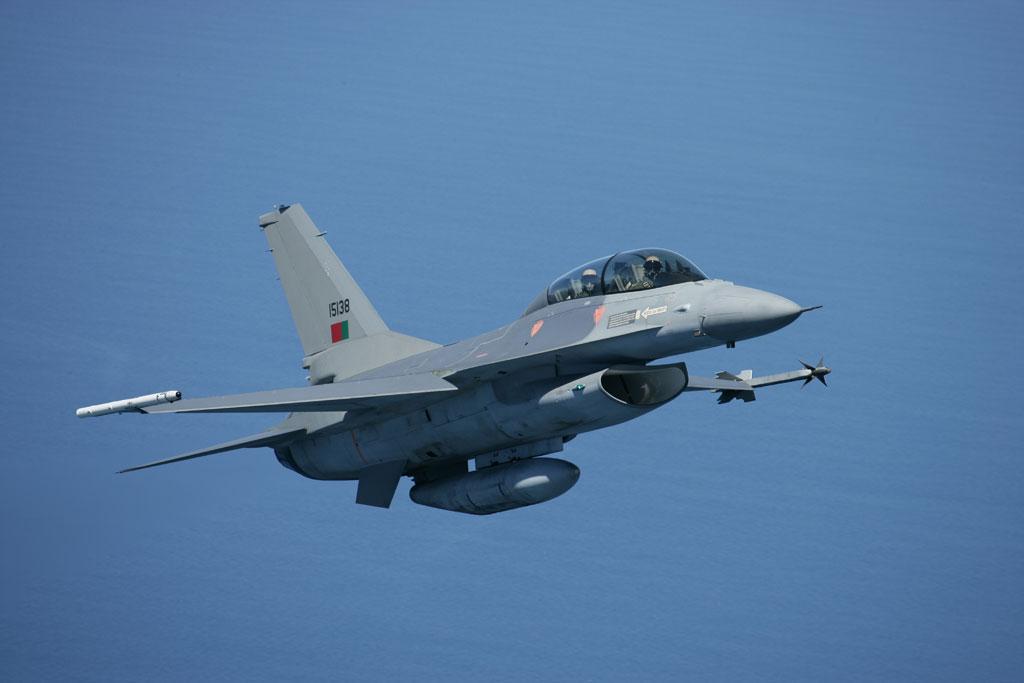 F-16 Fighting Falcon - Page 2 F16_mlu4l