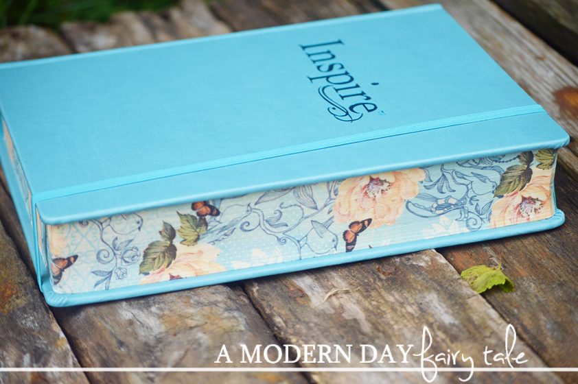 A modern day fairy tale inspire bible large print nlt a review