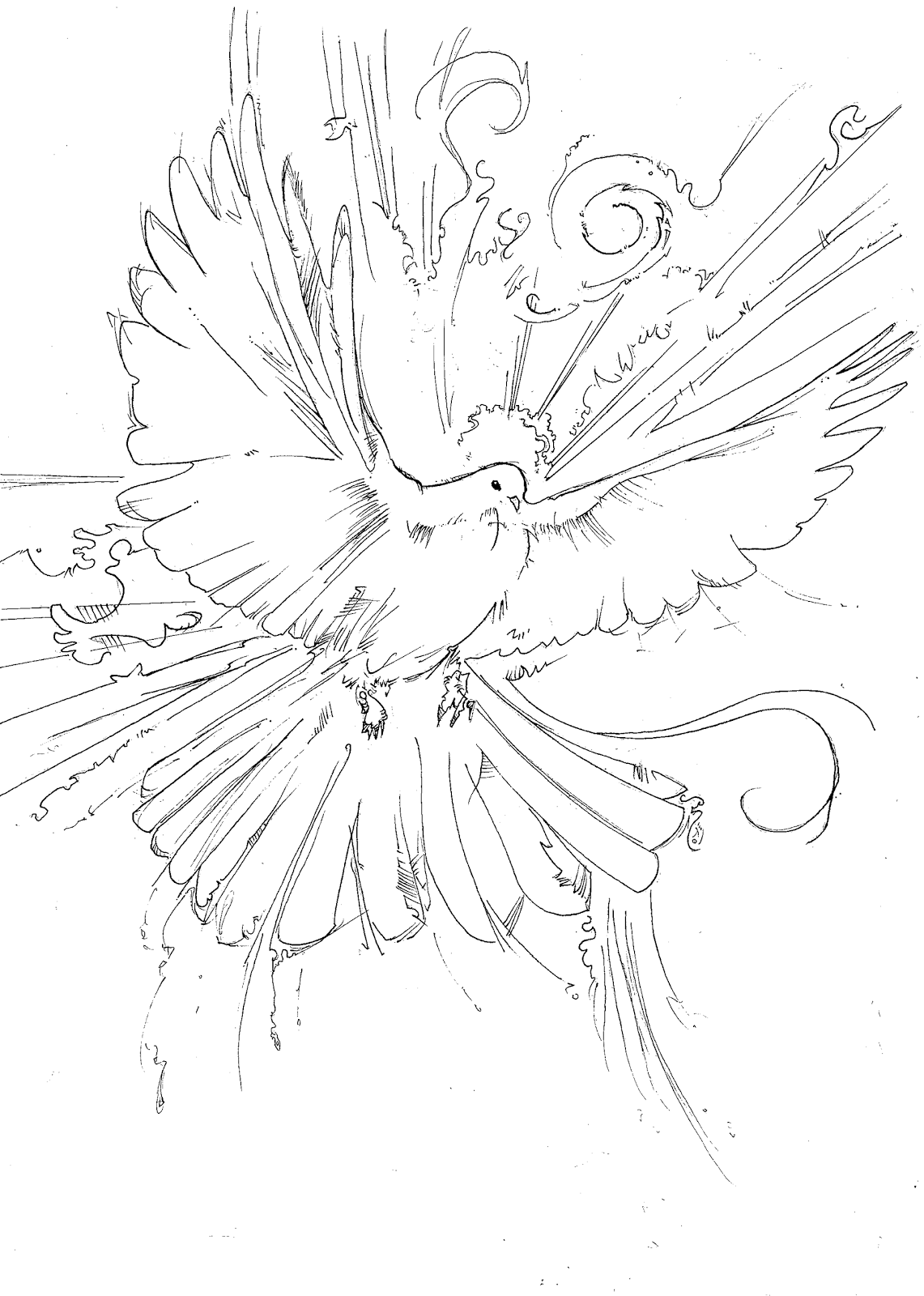 holy spirit dove coloring pages holy spirit dove clipart black