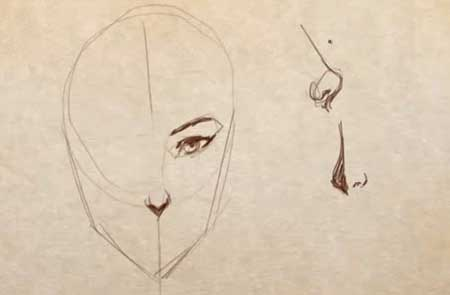 Line Drawing Female : How to draw female noses video lessons of drawing painting