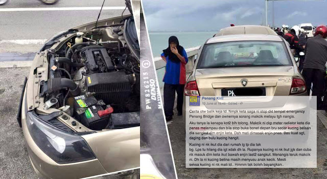 Viral Kisah Makcik Menangis di Jambatan Pulau Pinang