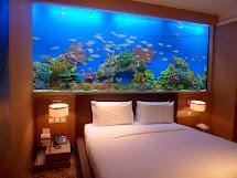 Evens Construction Pvt Aquarium Design