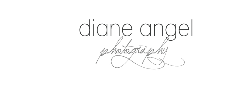 Diane Angel Photography