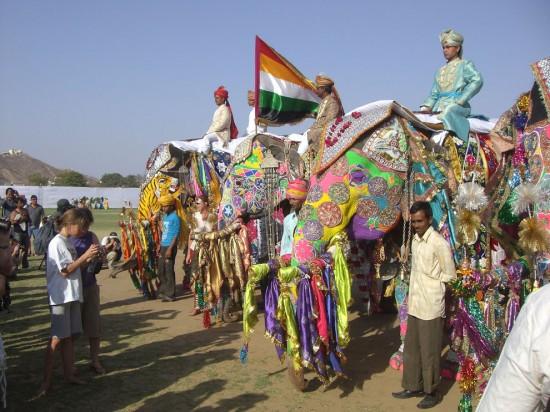 pawai gajah di india