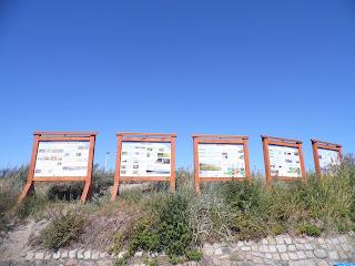 edukacyjne plansze ustawiono koło plaży w Sarbinowie Morskim koło Mielna - częsty widok nad Bałtykiem