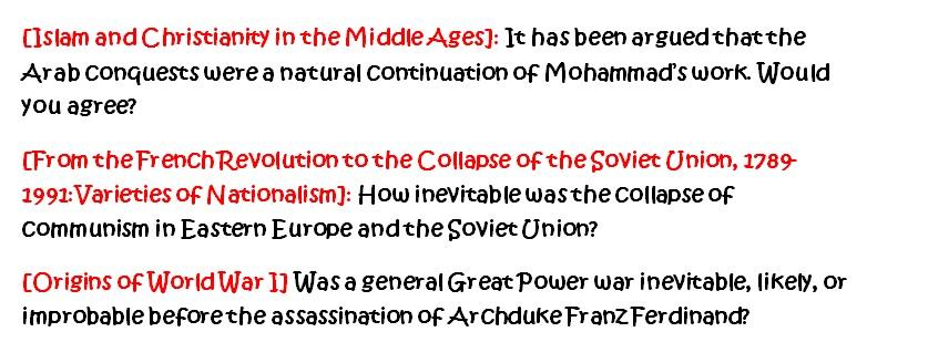 undergraduate history essay